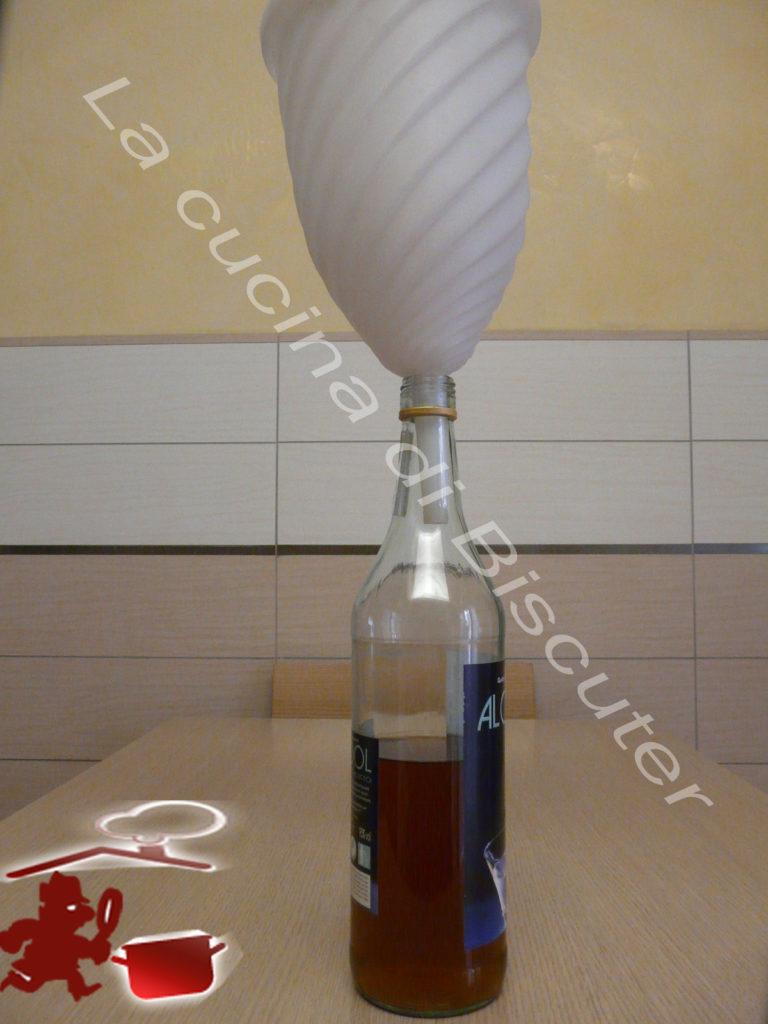 Liquore al melograno 14